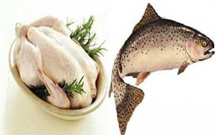 مرغ و ماهی قائم